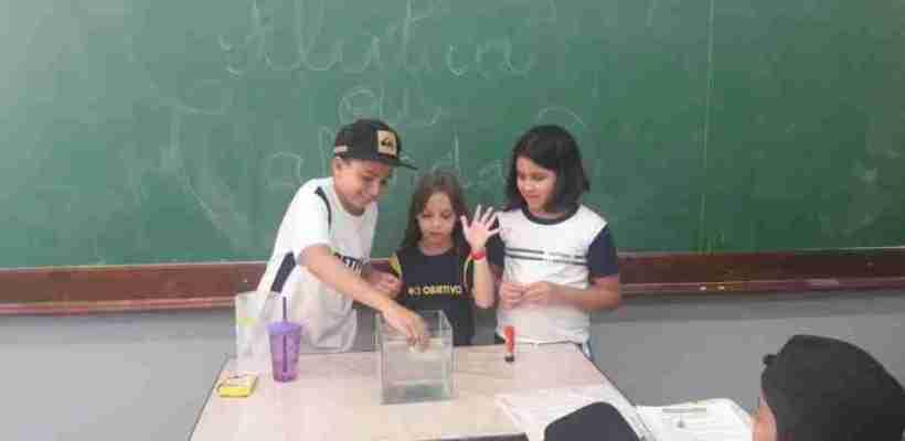 Aulas de Ciências – 4º anos A e B – Profª Andressa