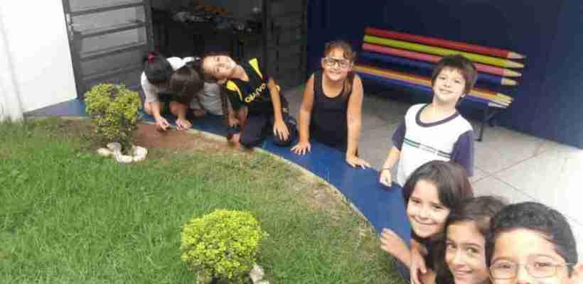 Aulas de Ciências – 3º anos A e B – Profª Andressa